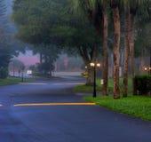 Estrada na noite na cidade Fotografia de Stock Royalty Free