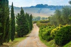 Estrada na região do Chianti na província de Siena toscânia Italy imagens de stock royalty free