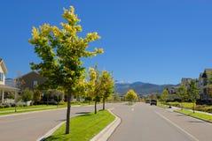 Estrada na vizinhança suburbana Foto de Stock Royalty Free