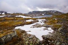 Estrada nacional 55 Sognefjellsvegen no tempo enevoado, Norw do turista Imagem de Stock Royalty Free