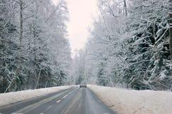 A estrada nas madeiras. fotografia de stock