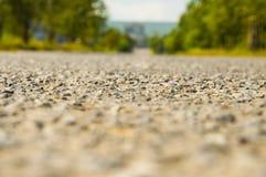 A estrada nas madeiras, asfalta horizontal Imagens de Stock