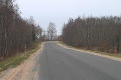 Estrada nas madeiras no outono com superfície dura imagem de stock