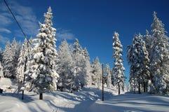Estrada nevado Foto de Stock Royalty Free