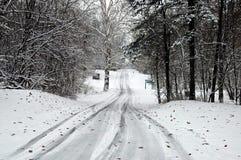 Estrada nevado 6 Fotografia de Stock Royalty Free