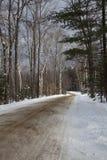 Estrada nevado através das madeiras Imagem de Stock Royalty Free