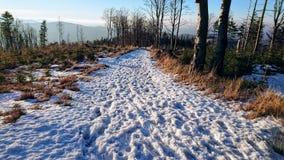 Estrada nevado da montanha fotografia de stock royalty free