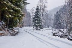 Estrada nevado na floresta Foto de Stock