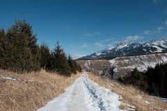 Estrada nevado nas montanhas fotos de stock