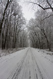 Estrada nevado no inverno Imagens de Stock Royalty Free
