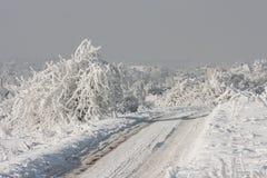 Estrada nevado no inverno (Polônia) Fotografia de Stock