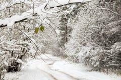 Estrada nevado pequena na floresta do inverno Foto de Stock Royalty Free