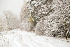 Estrada nevado pequena na floresta do inverno Fotografia de Stock Royalty Free