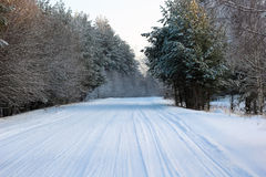 estrada Neve-coberta na floresta Fotografia de Stock