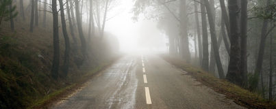 Estrada nevoenta Fotos de Stock
