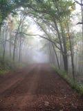 Estrada nevoenta Imagens de Stock