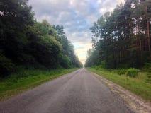 Estrada no bosque de woods Imagem de Stock Royalty Free