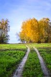 Estrada no campo outono Fotos de Stock Royalty Free
