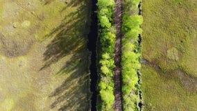 Estrada no campo trajeto entre as madeiras e a ?gua verdes na opini?o superior do reservat?rio estrada regional da vista atrav?s  filme