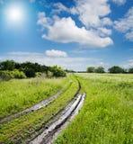 Estrada no campo verde Foto de Stock Royalty Free