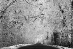 Estrada no cenário do inverno fotos de stock