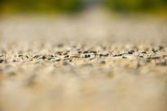 Estrada no curso da beleza das madeiras Fotos de Stock
