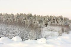 Estrada no inverno no alvorecer Foto de Stock Royalty Free