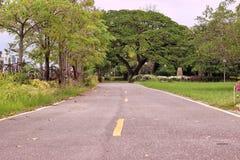 Estrada no jardim verde Fotos de Stock