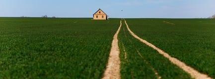 Estrada no meio de um campo verde fotos de stock royalty free