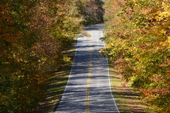 Estrada no outono Imagens de Stock