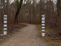 A estrada no outono, na neve de alguns lugares é já visível Foto de Stock