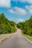 A estrada no parque Foto de Stock