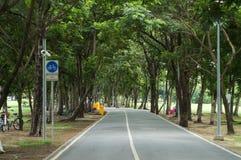 Estrada no parque Imagens de Stock Royalty Free