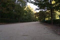 Estrada no parque Fotografia de Stock Royalty Free