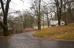 Estrada no parque do outono Fotos de Stock Royalty Free