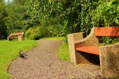 Estrada no parque na primavera Imagem de Stock Royalty Free