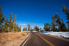 Estrada no parque nacional da garganta de Bruce com abeto foto de stock