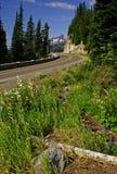 Estrada no parque nacional mais chuvoso da montagem Imagens de Stock Royalty Free