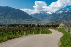 A estrada no Spring Valley Fotografia de Stock
