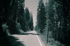 Estrada nostálgica Fotos de Stock
