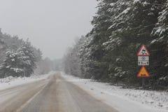 Estrada ocupada na noite do inverno Fotografia de Stock Royalty Free