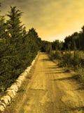 Estrada para o sol Fotos de Stock Royalty Free