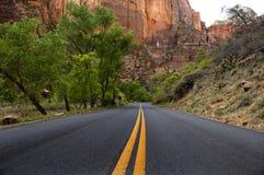 Estrada pavimentada, parque nacional de Zion fotos de stock