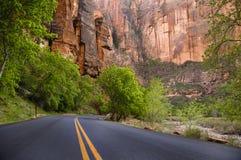 Estrada pavimentada, parque nacional de Zion fotografia de stock royalty free