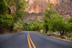 Estrada pavimentada, parque nacional de Zion imagens de stock royalty free
