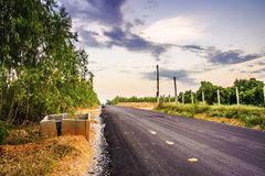 A estrada pavimentada que através da floresta Fotografia de Stock