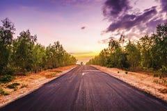 A estrada pavimentada que através da floresta Imagens de Stock Royalty Free
