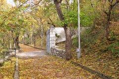Estrada pavimentada velha através da floresta Pyatigorsk, Rússia Imagem de Stock