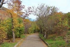Estrada pavimentada velha através da montanha de Mashuk da floresta Pyatigorsk, Rússia Fotos de Stock