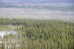 Estrada Peace River de Alaska fotos de stock